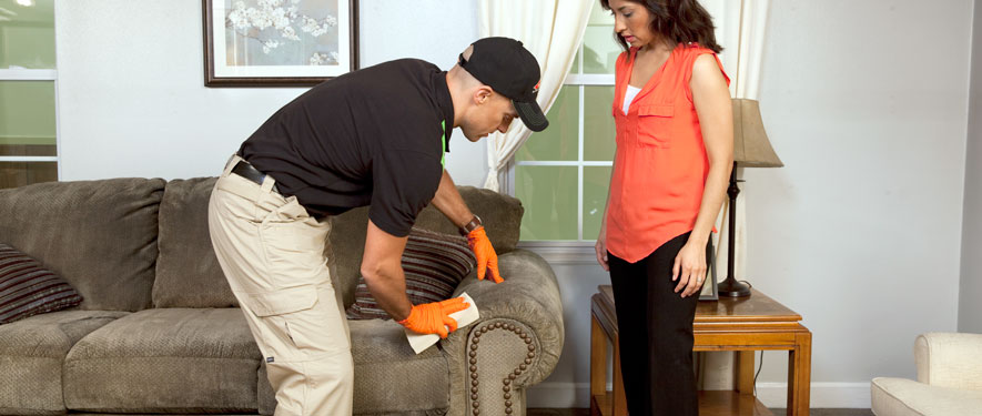Carrollton, GA carpet upholstery cleaning
